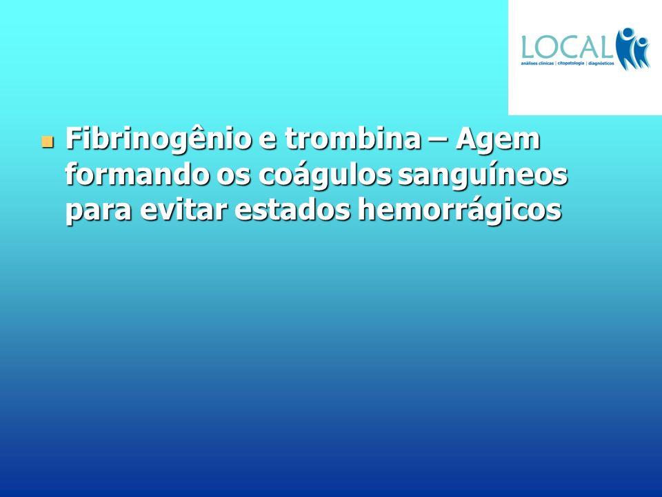 Fibrinogênio e trombina – Agem formando os coágulos sanguíneos para evitar estados hemorrágicos