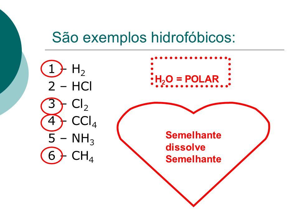 São exemplos hidrofóbicos: