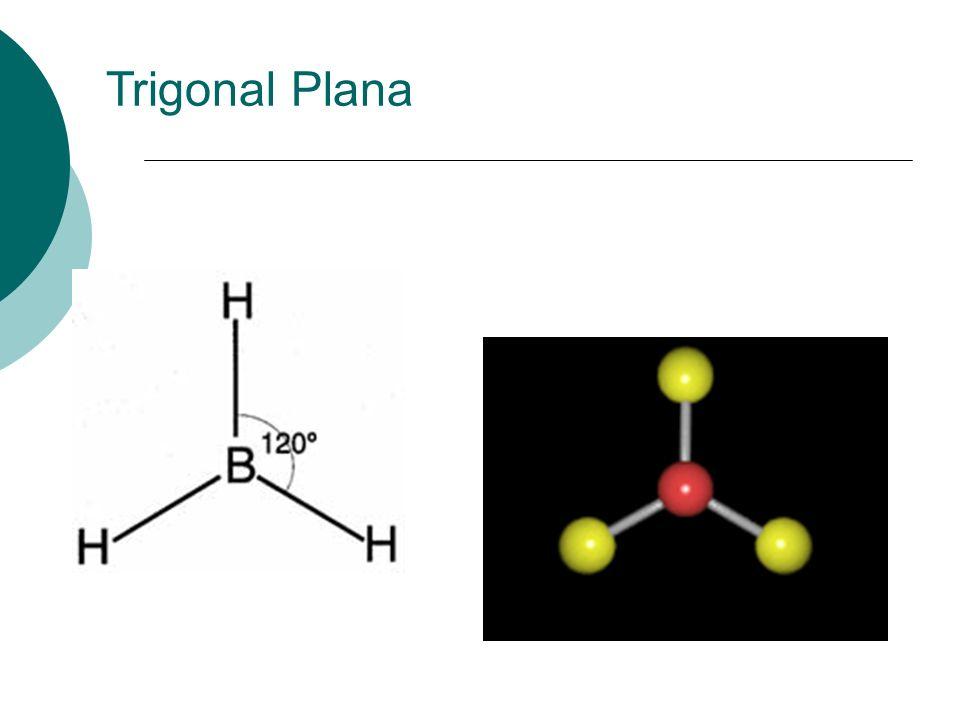 Trigonal Plana