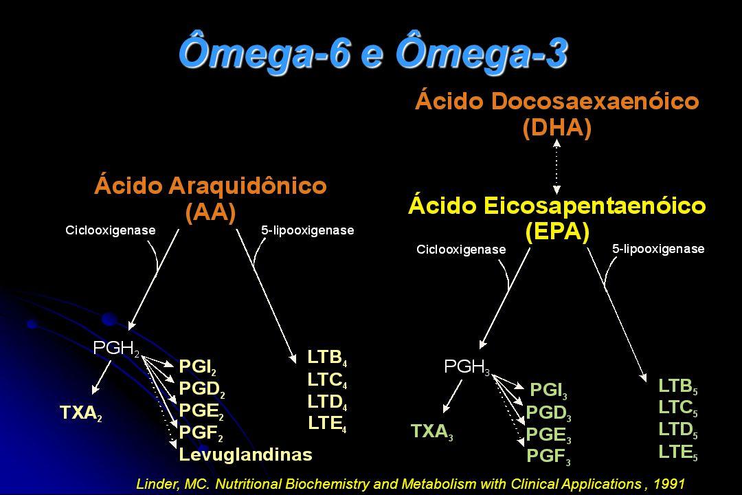 Ômega-6 e Ômega-3 Os ácidos graxos ômega-6 produzem mais prostaglandinas e leucotrienos inflamatórios, comparados com os ácidos graxos ômega-3.