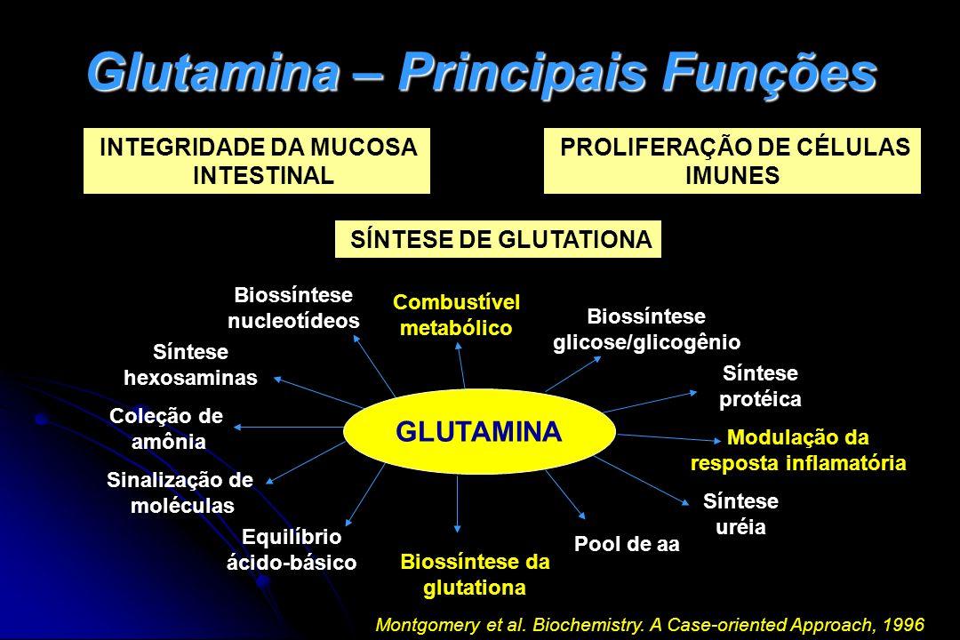 Glutamina – Principais Funções