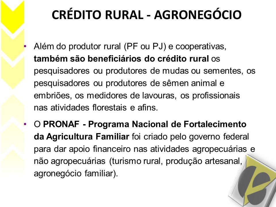 CRÉDITO RURAL - AGRONEGÓCIO