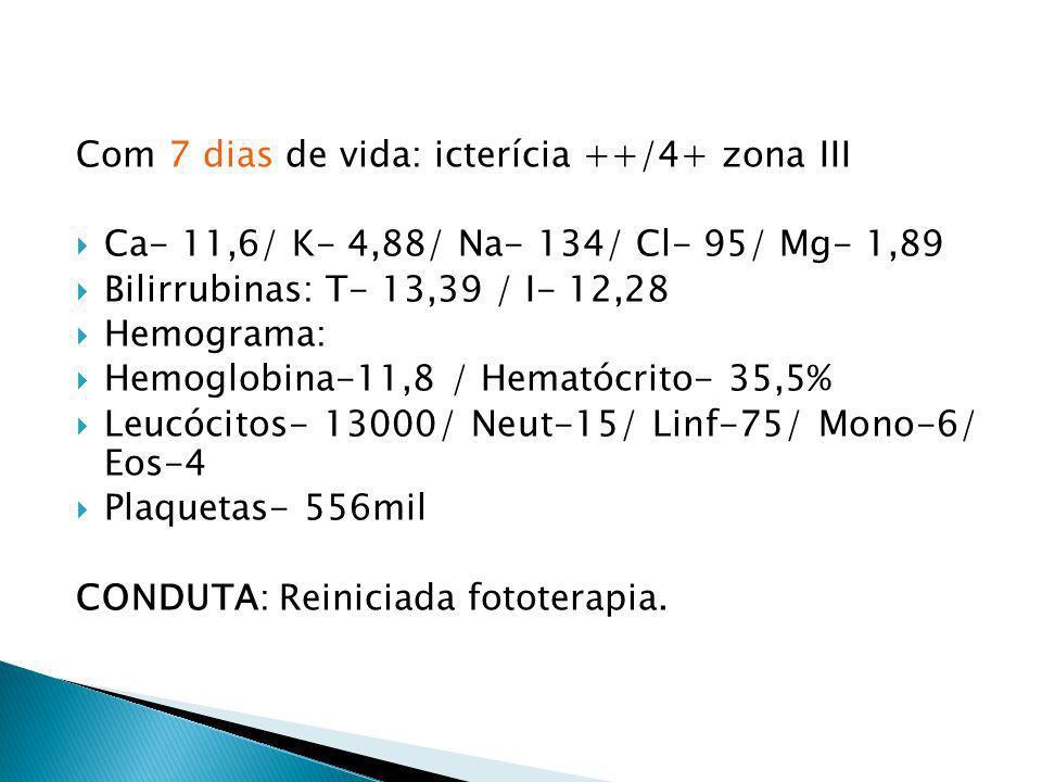 Com 7 dias de vida: icterícia ++/4+ zona III