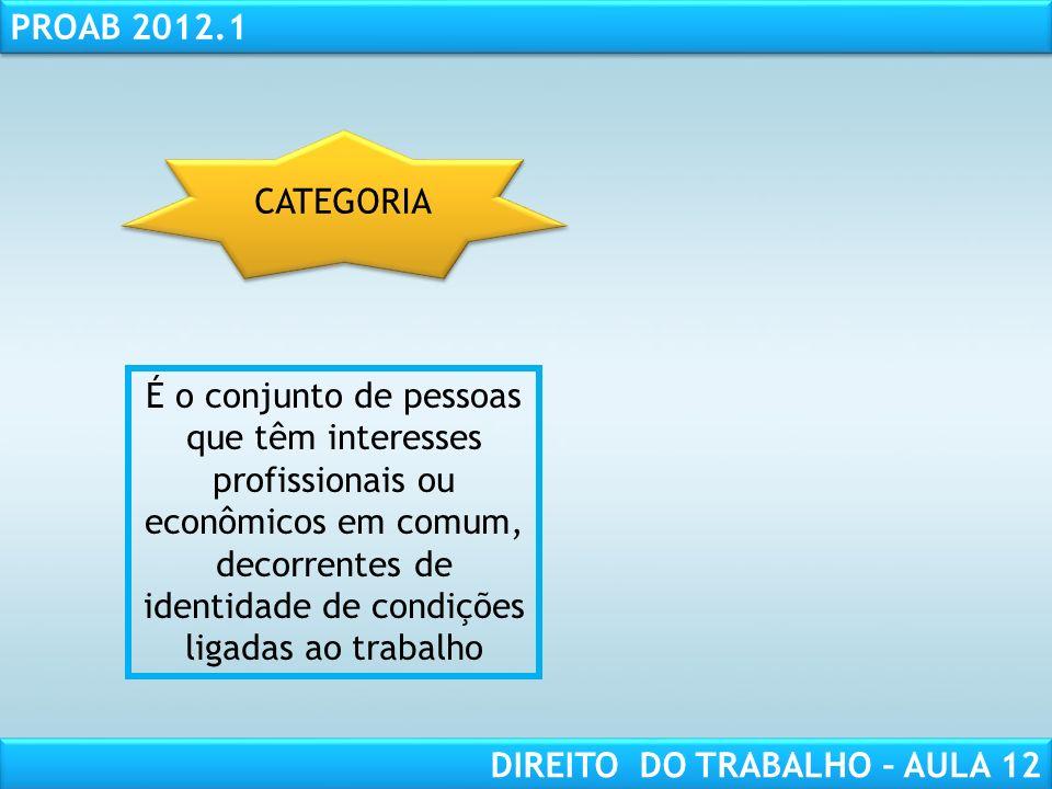 CATEGORIA É o conjunto de pessoas que têm interesses profissionais ou econômicos em comum, decorrentes de identidade de condições ligadas ao trabalho.
