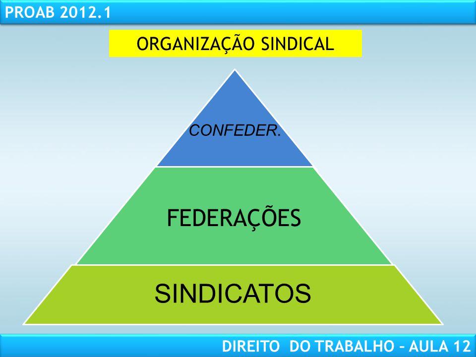 ORGANIZAÇÃO SINDICAL CONFEDER. FEDERAÇÕES SINDICATOS