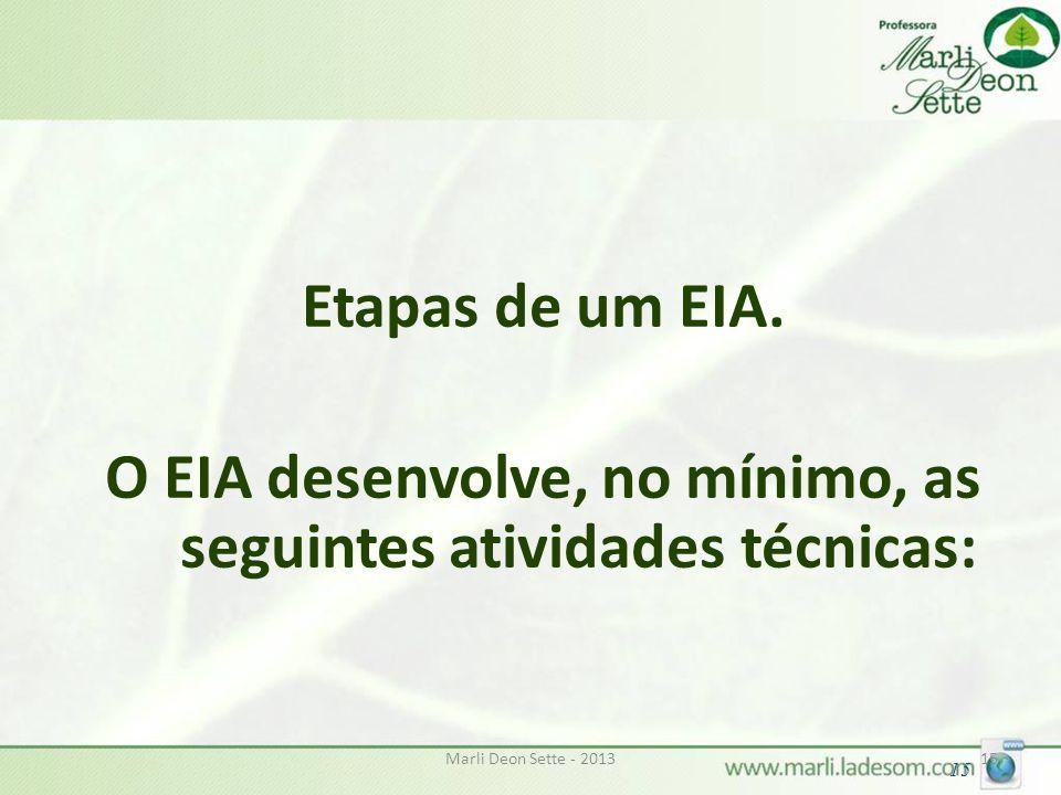 O EIA desenvolve, no mínimo, as seguintes atividades técnicas: