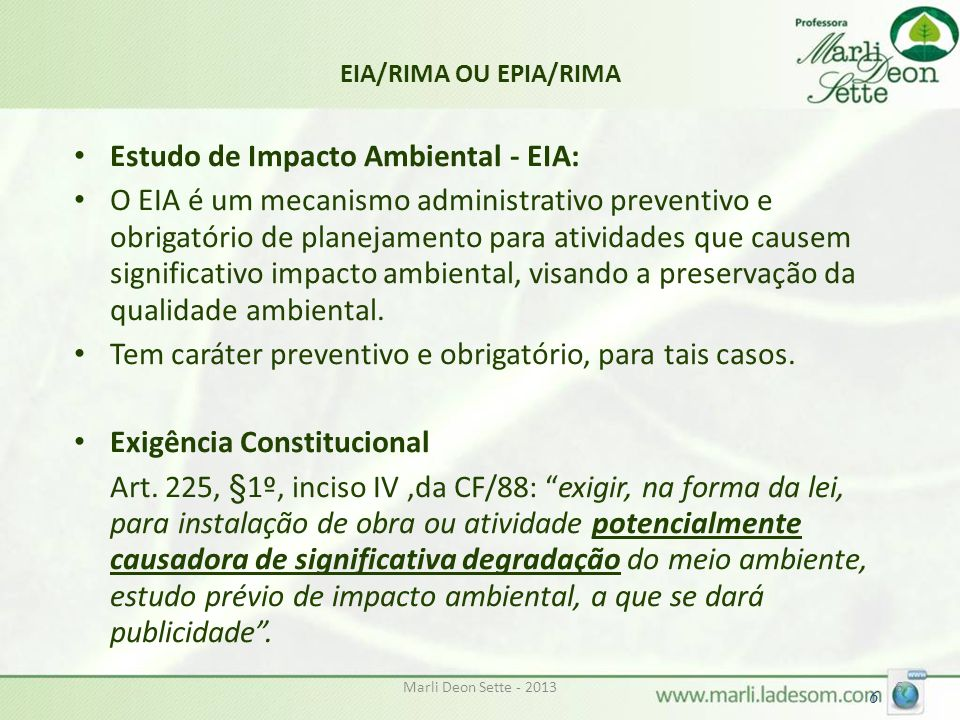 Estudo de Impacto Ambiental - EIA: