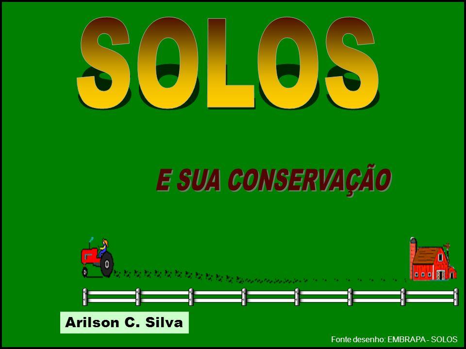 SOLOS E SUA CONSERVAÇÃO Arilson C. Silva