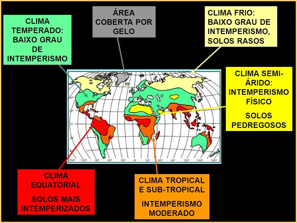 CLIMA TEMPERADO: BAIXO GRAU DE INTEMPERISMO ÁREA COBERTA POR GELO