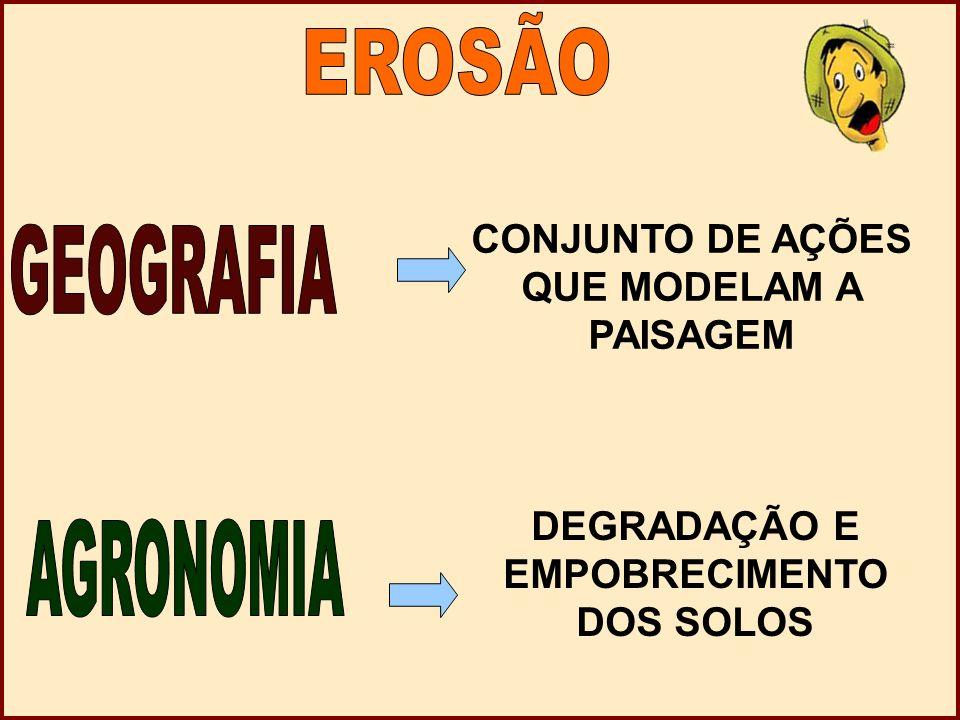 EROSÃO GEOGRAFIA AGRONOMIA CONJUNTO DE AÇÕES QUE MODELAM A PAISAGEM