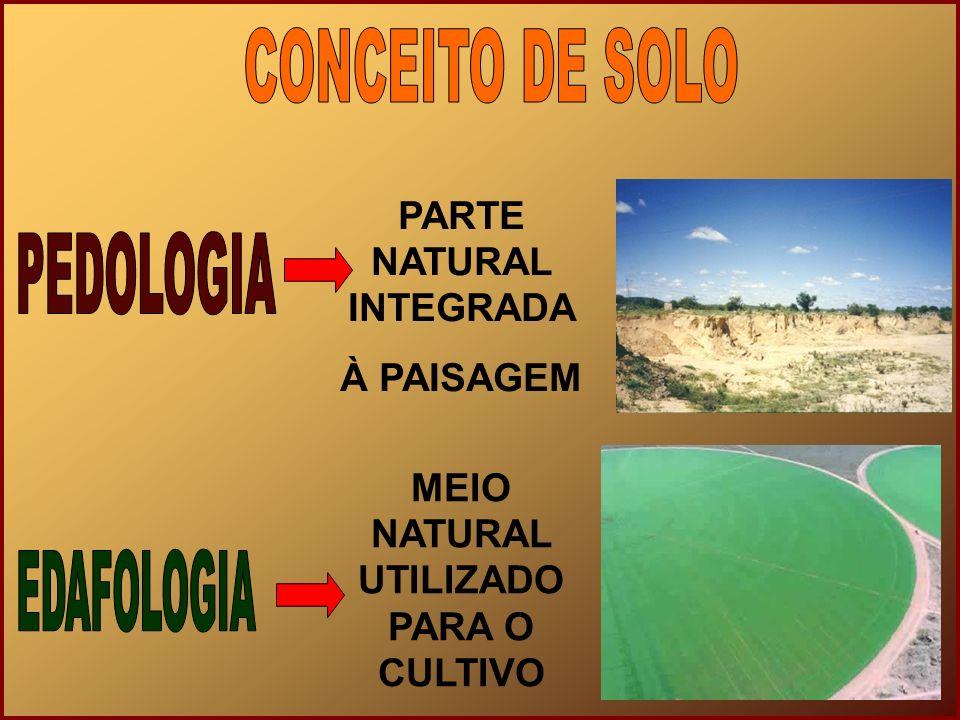 PARTE NATURAL INTEGRADA MEIO NATURAL UTILIZADO PARA O CULTIVO