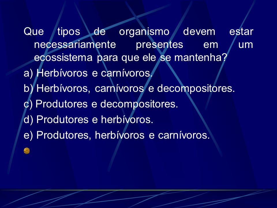 Que tipos de organismo devem estar necessariamente presentes em um ecossistema para que ele se mantenha