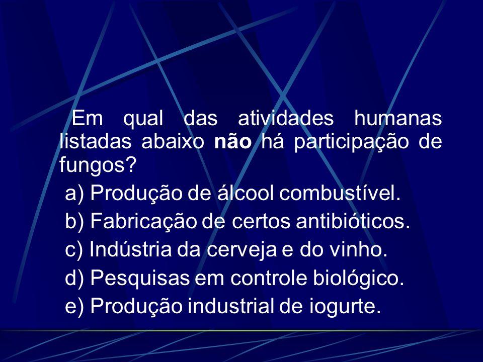 Em qual das atividades humanas listadas abaixo não há participação de fungos