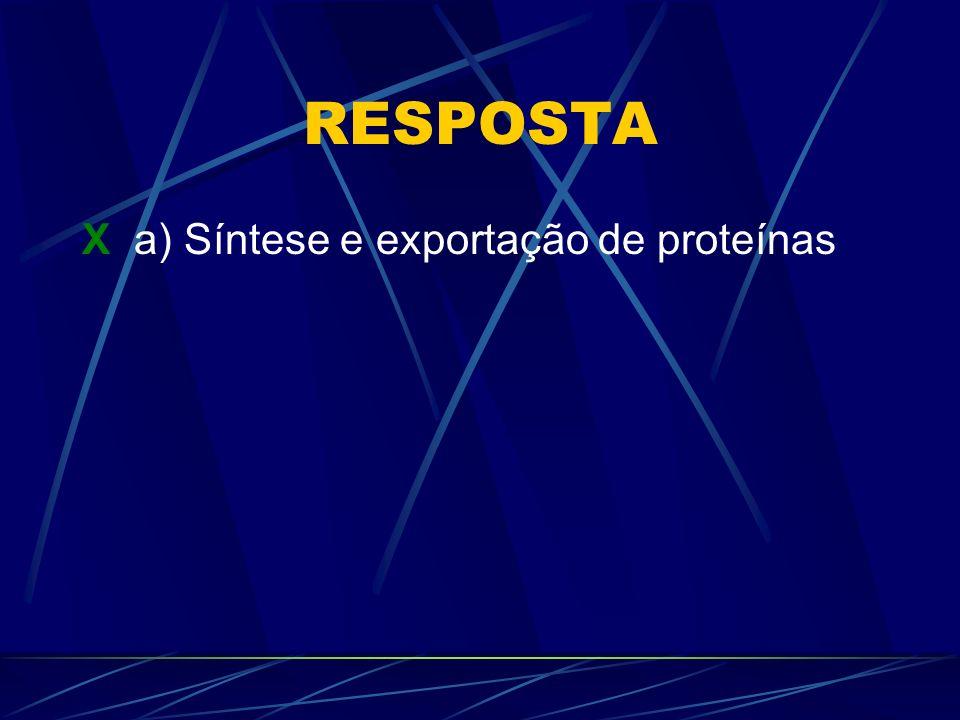 RESPOSTA X a) Síntese e exportação de proteínas