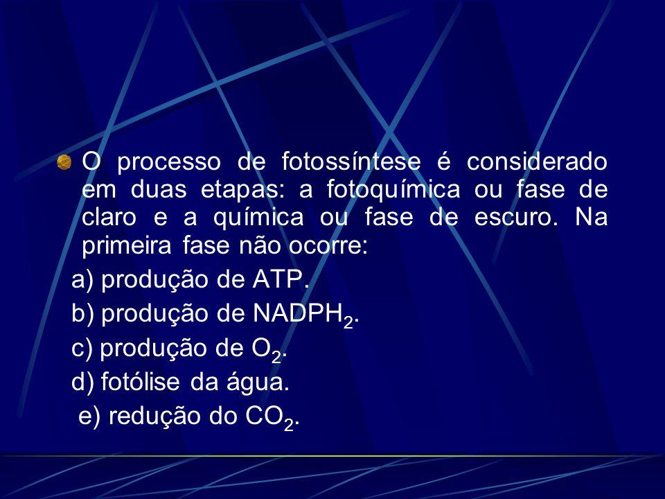 O processo de fotossíntese é considerado em duas etapas: a fotoquímica ou fase de claro e a química ou fase de escuro. Na primeira fase não ocorre: