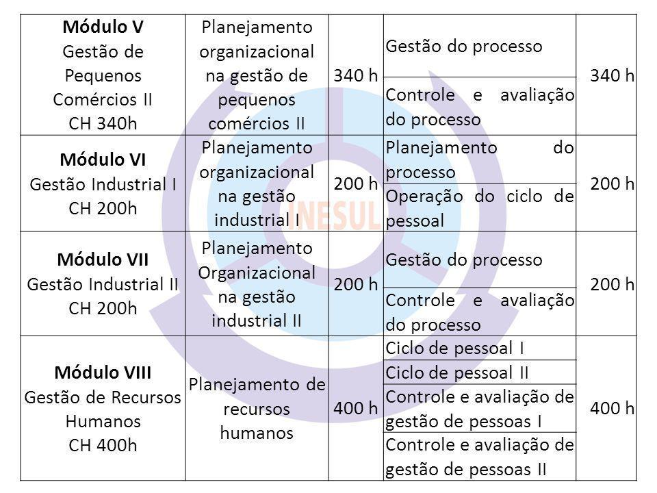 Módulo V Módulo VI Módulo VII Módulo VIII
