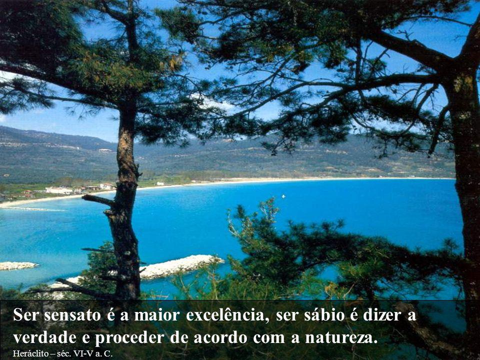 Ser sensato é a maior excelência, ser sábio é dizer a verdade e proceder de acordo com a natureza.