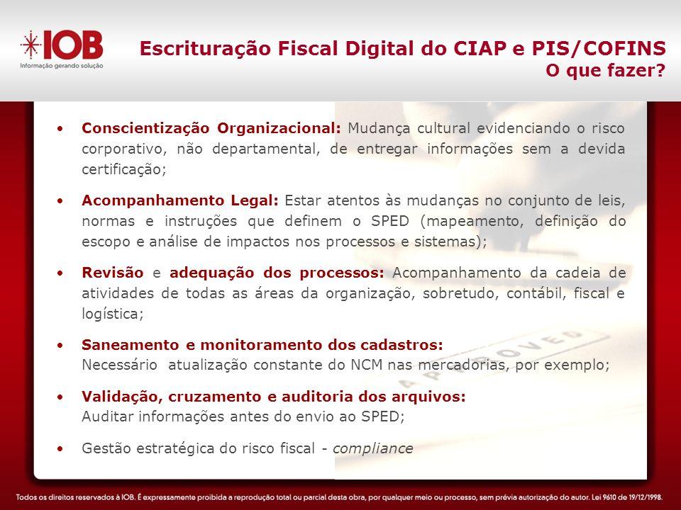 Escrituração Fiscal Digital do CIAP e PIS/COFINS