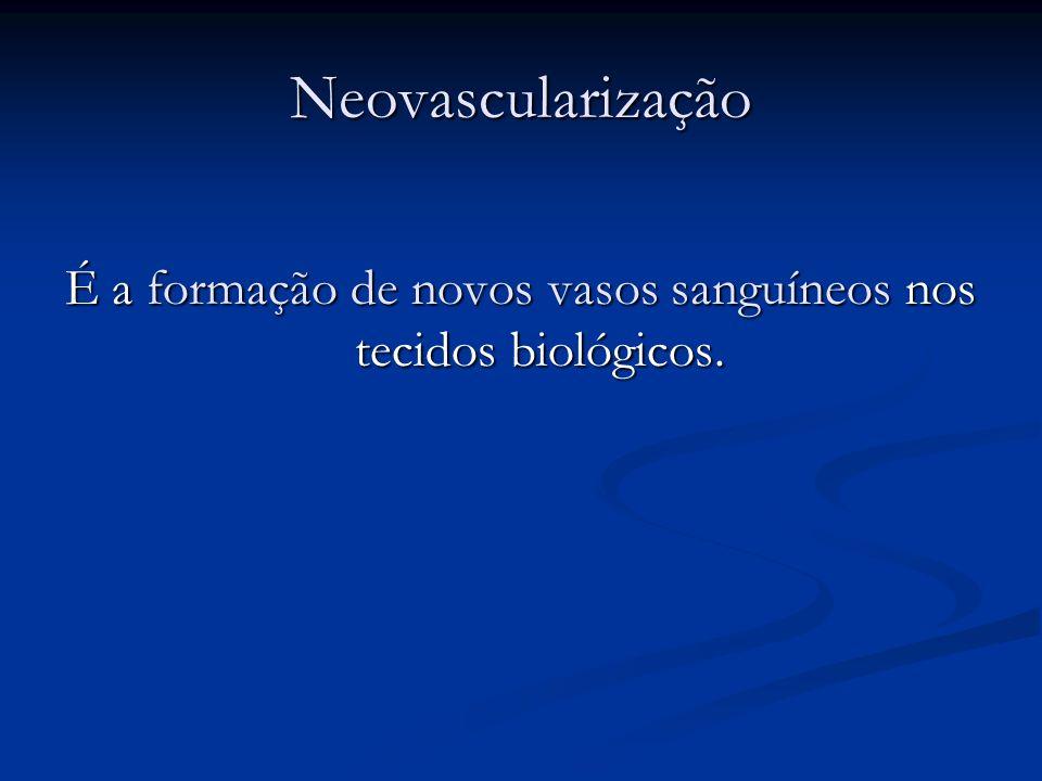É a formação de novos vasos sanguíneos nos tecidos biológicos.