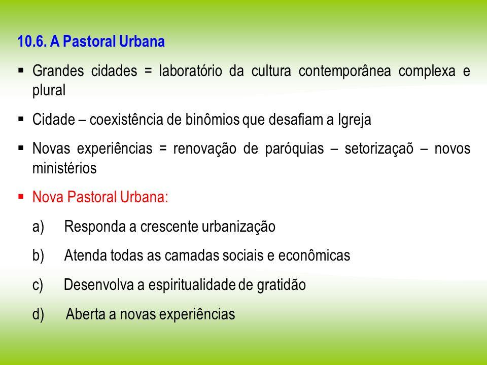 10.6. A Pastoral Urbana Grandes cidades = laboratório da cultura contemporânea complexa e plural.