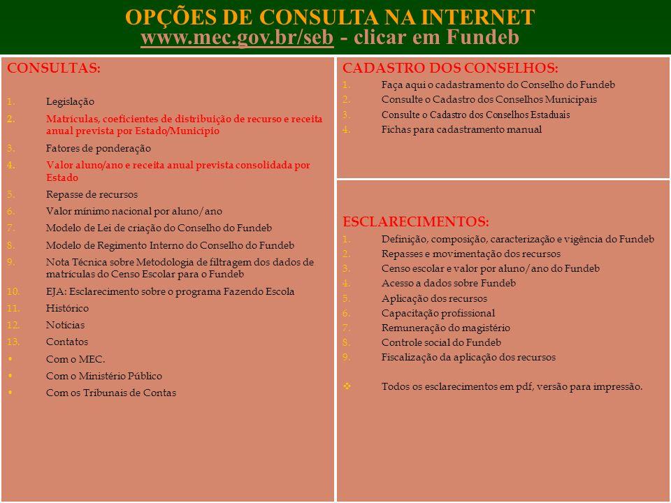 OPÇÕES DE CONSULTA NA INTERNET www.mec.gov.br/seb - clicar em Fundeb