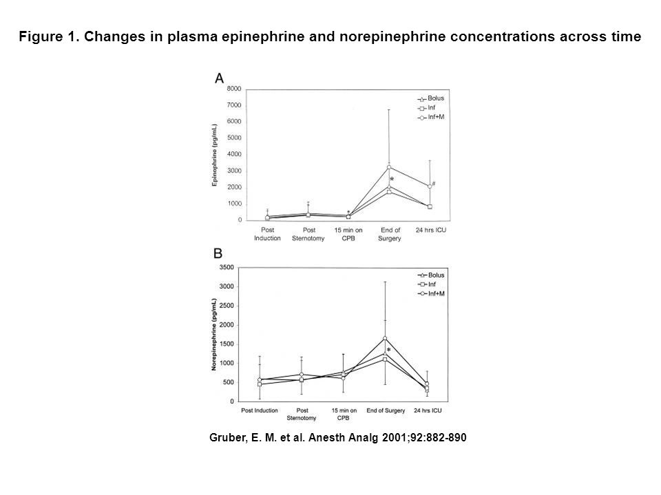 Figure 1. Changes in plasma epinephrine and norepinephrine concentrations across time