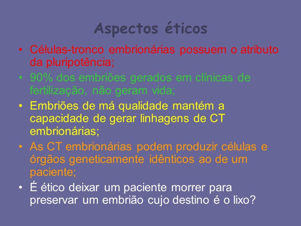 Aspectos éticos Células-tronco embrionárias possuem o atributo da pluripotência;