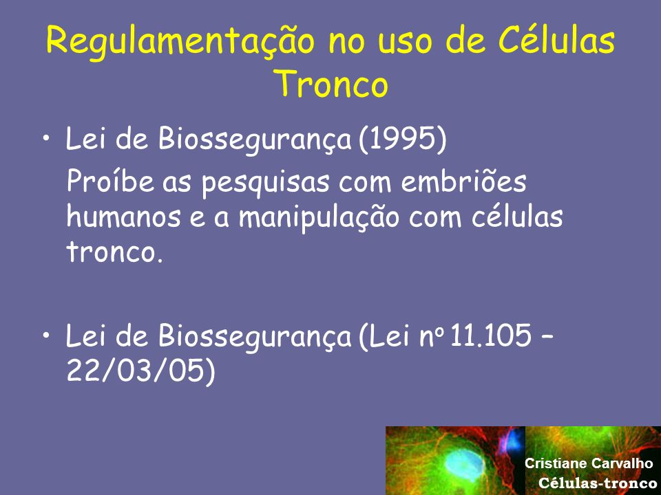 Regulamentação no uso de Células Tronco