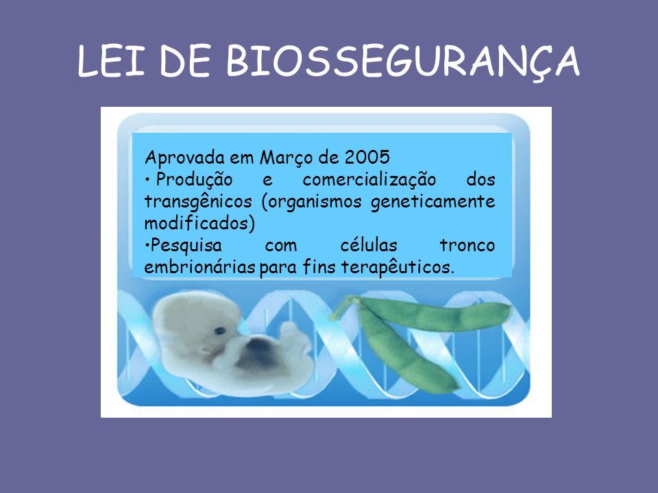 LEI DE BIOSSEGURANÇA Aprovada em Março de 2005