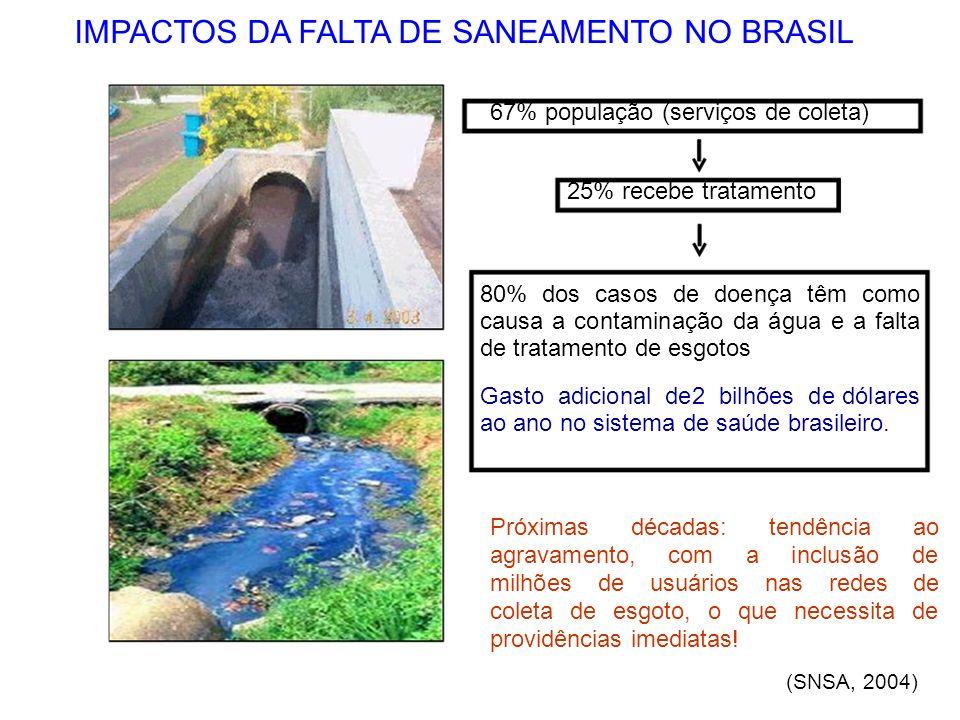 IMPACTOS DA FALTA DE SANEAMENTO NO BRASIL
