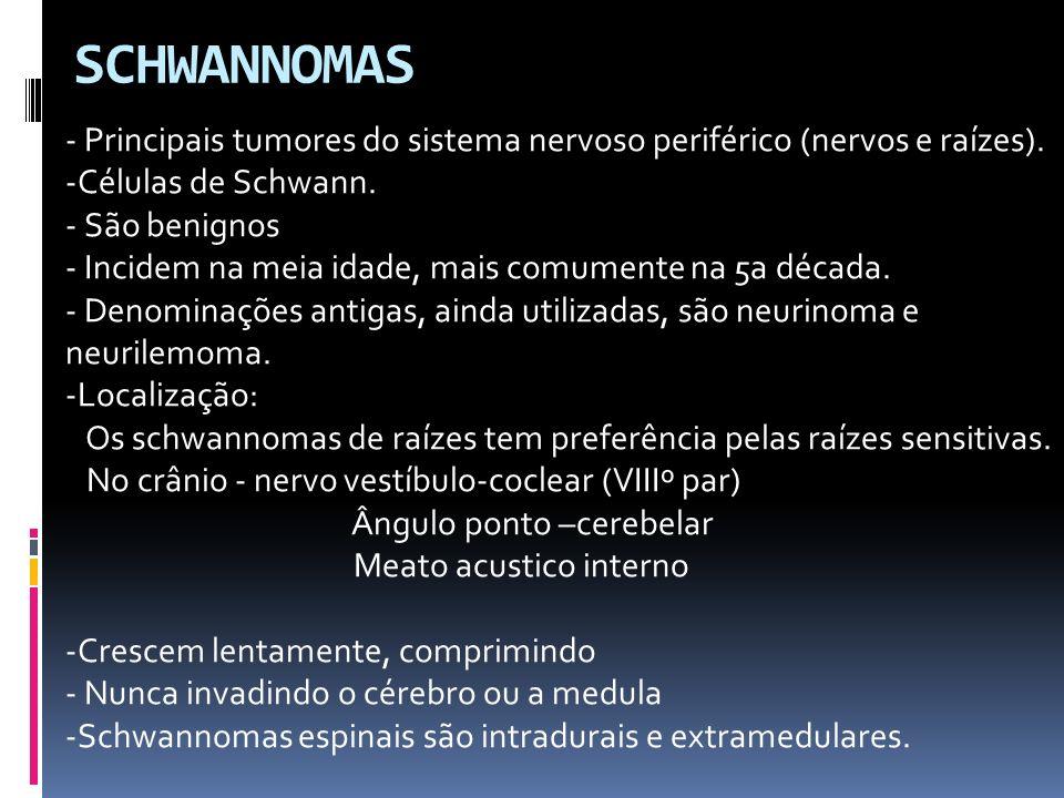 SCHWANNOMAS - Principais tumores do sistema nervoso periférico (nervos e raízes). Células de Schwann.