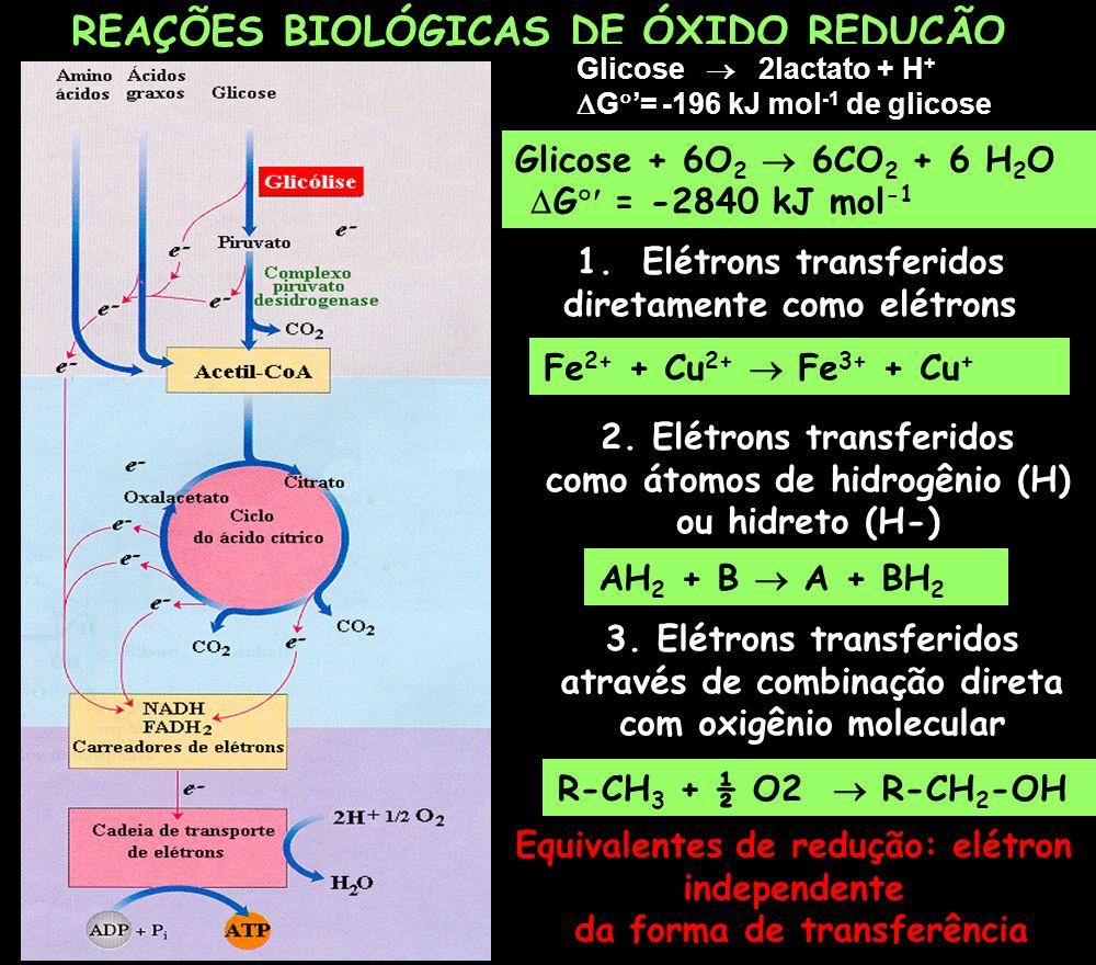 REAÇÕES BIOLÓGICAS DE ÓXIDO REDUÇÃO