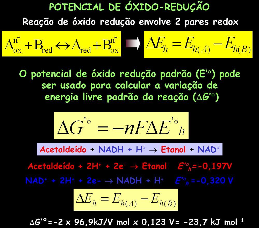 O potencial de óxido redução padrão (E') pode