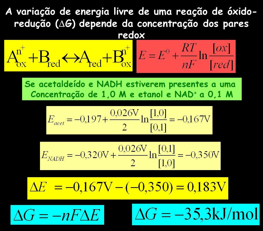 A variação de energia livre de uma reação de óxido-redução (G) depende da concentração dos pares redox