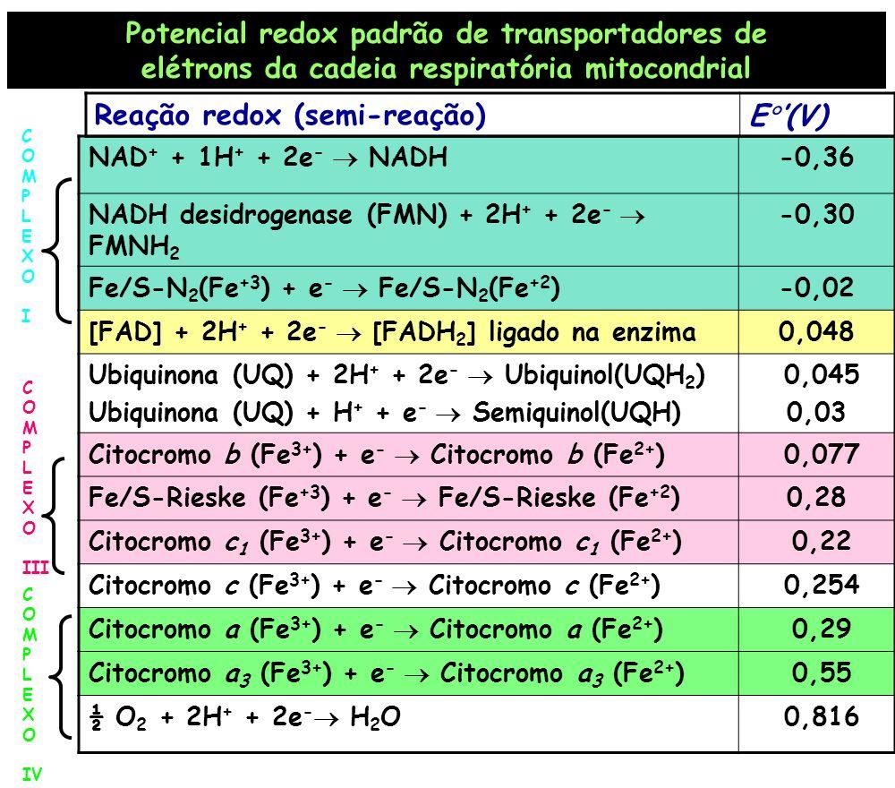 Potencial redox padrão de transportadores de