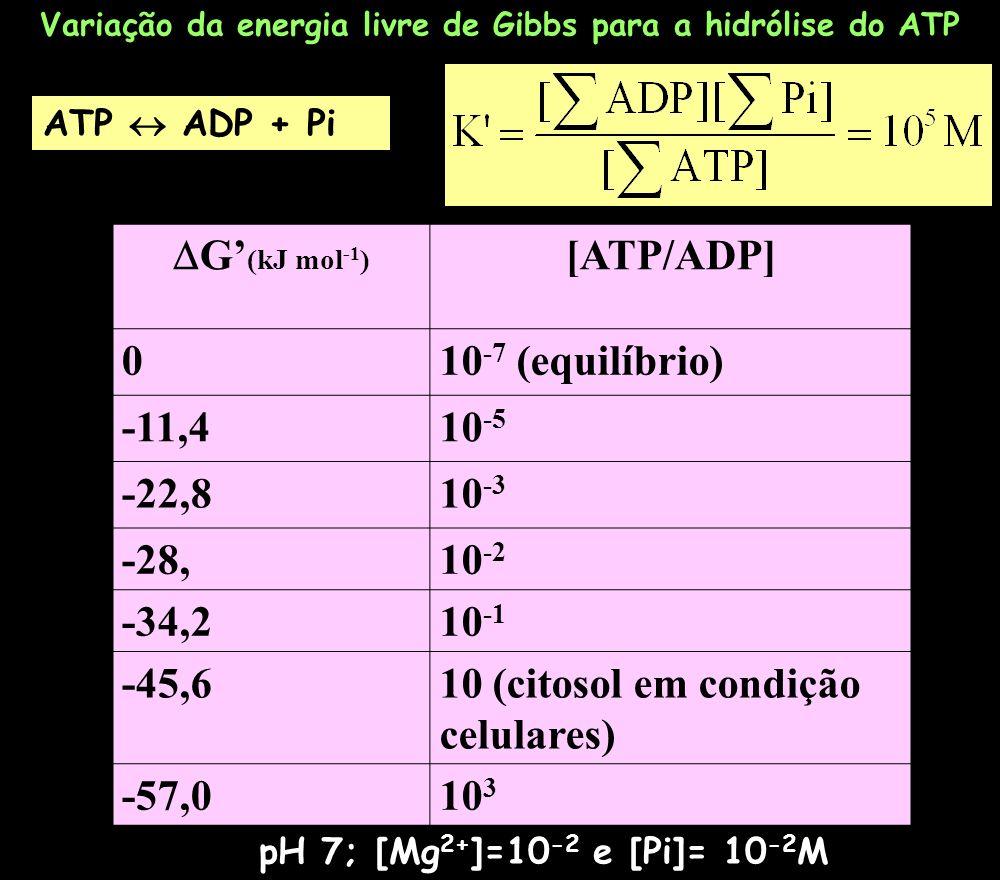 Variação da energia livre de Gibbs para a hidrólise do ATP