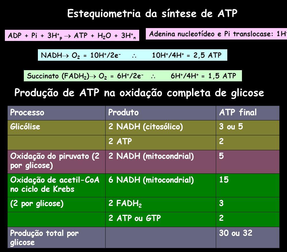 Estequiometria da síntese de ATP