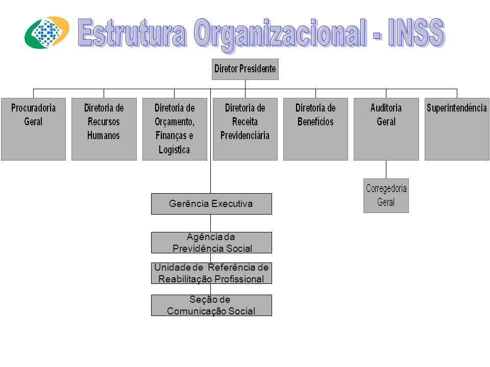 Estrutura Organizacional - INSS