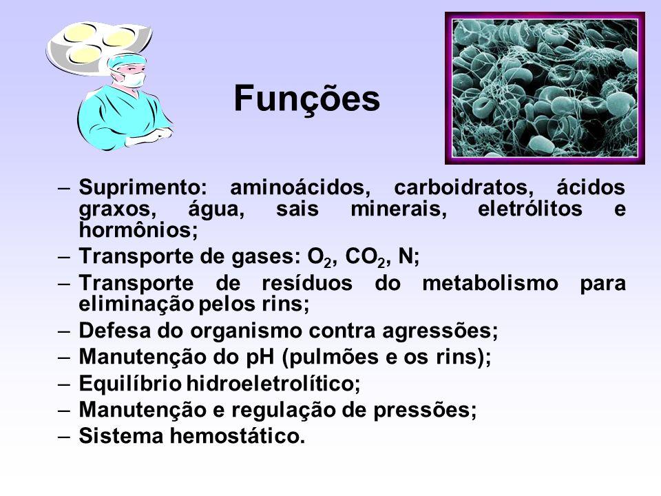 Funções Suprimento: aminoácidos, carboidratos, ácidos graxos, água, sais minerais, eletrólitos e hormônios;