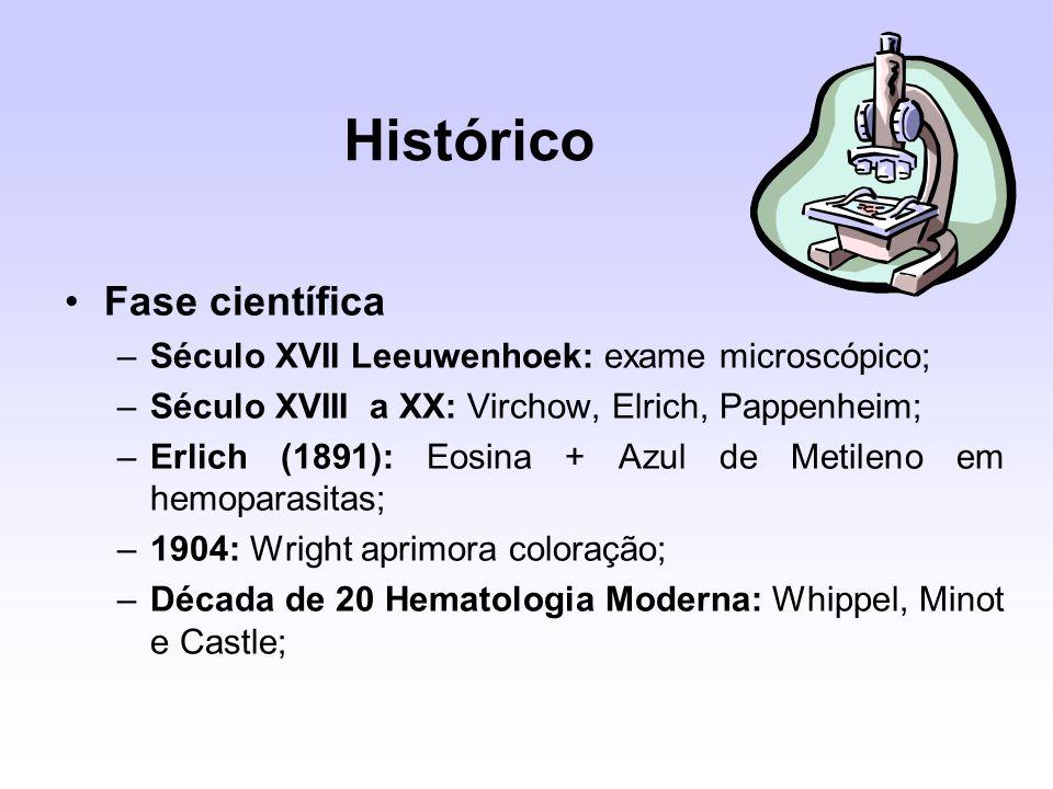 Histórico Fase científica Século XVII Leeuwenhoek: exame microscópico;