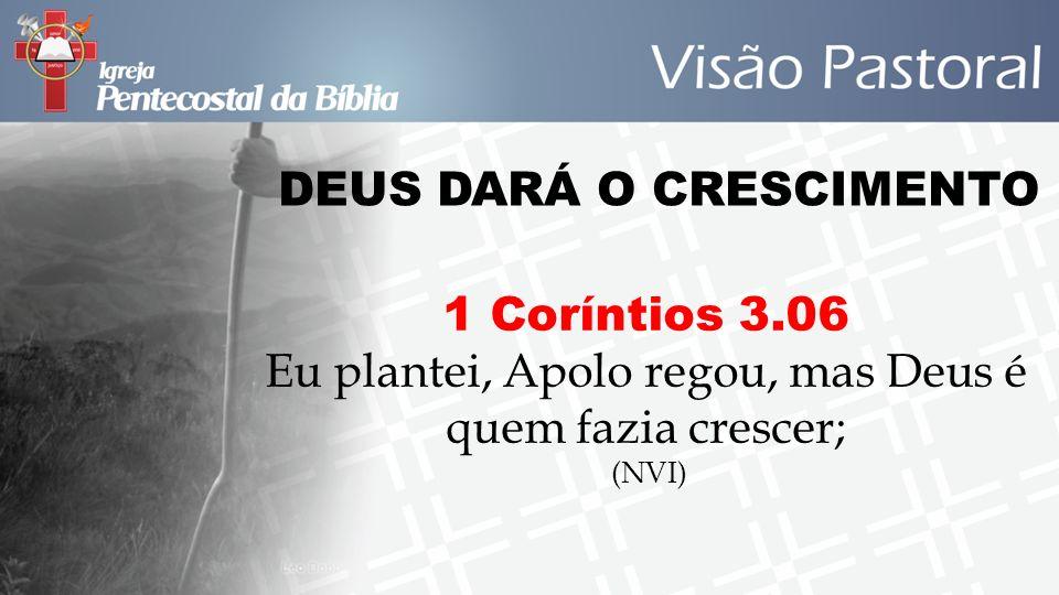 DEUS DARÁ O CRESCIMENTO