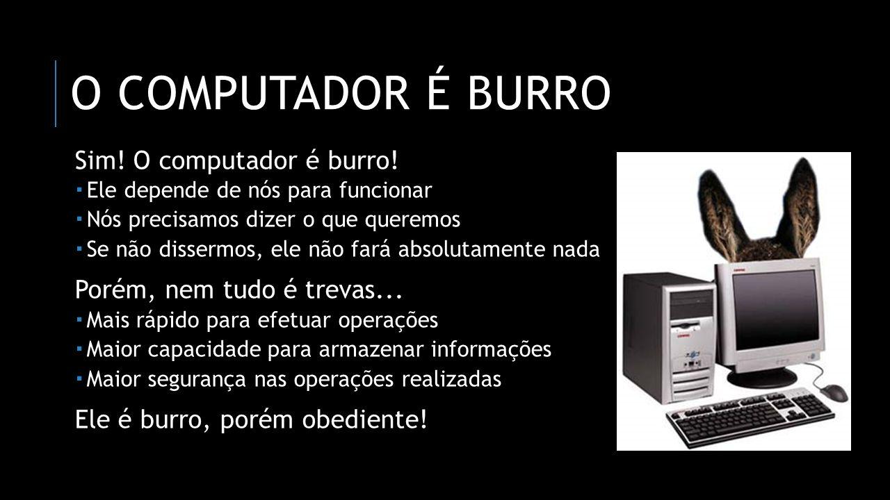 O computador é burro Sim! O computador é burro!