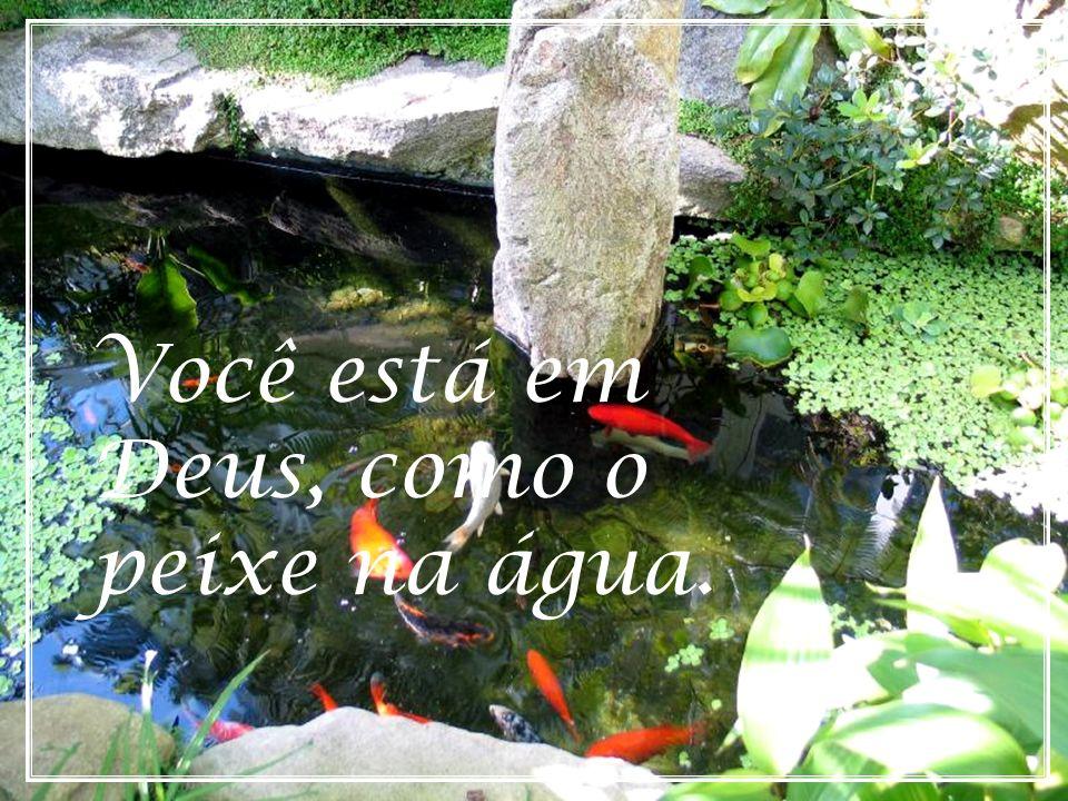 Você está em Deus, como o peixe na água.