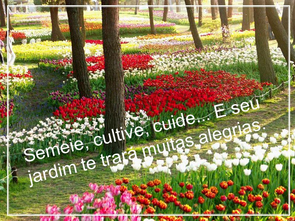 Semeie, cultive, cuide... E seu jardim te trará muitas alegrias.