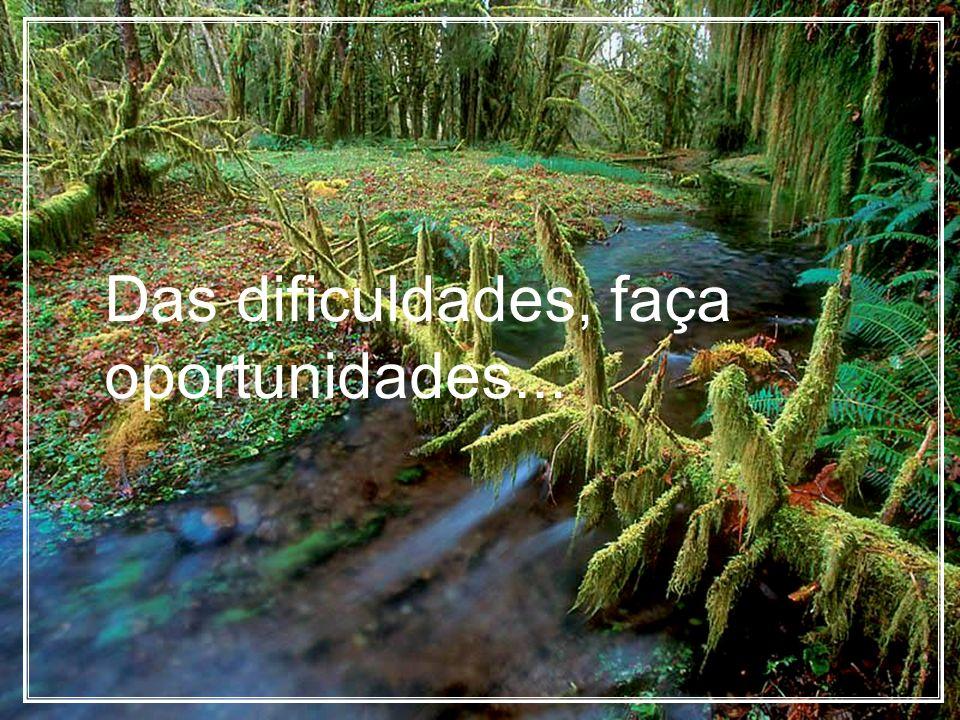 Das dificuldades, faça oportunidades...