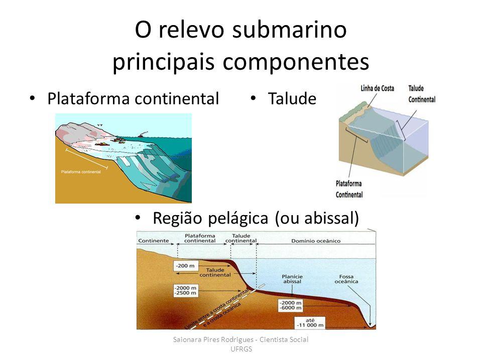 O relevo submarino principais componentes
