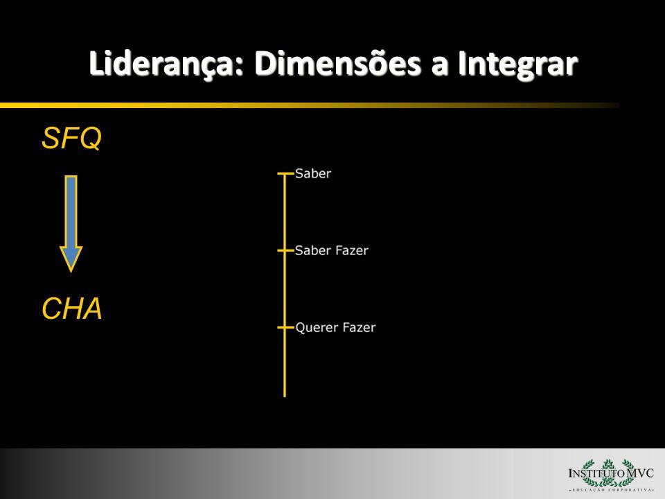 Liderança: Dimensões a Integrar