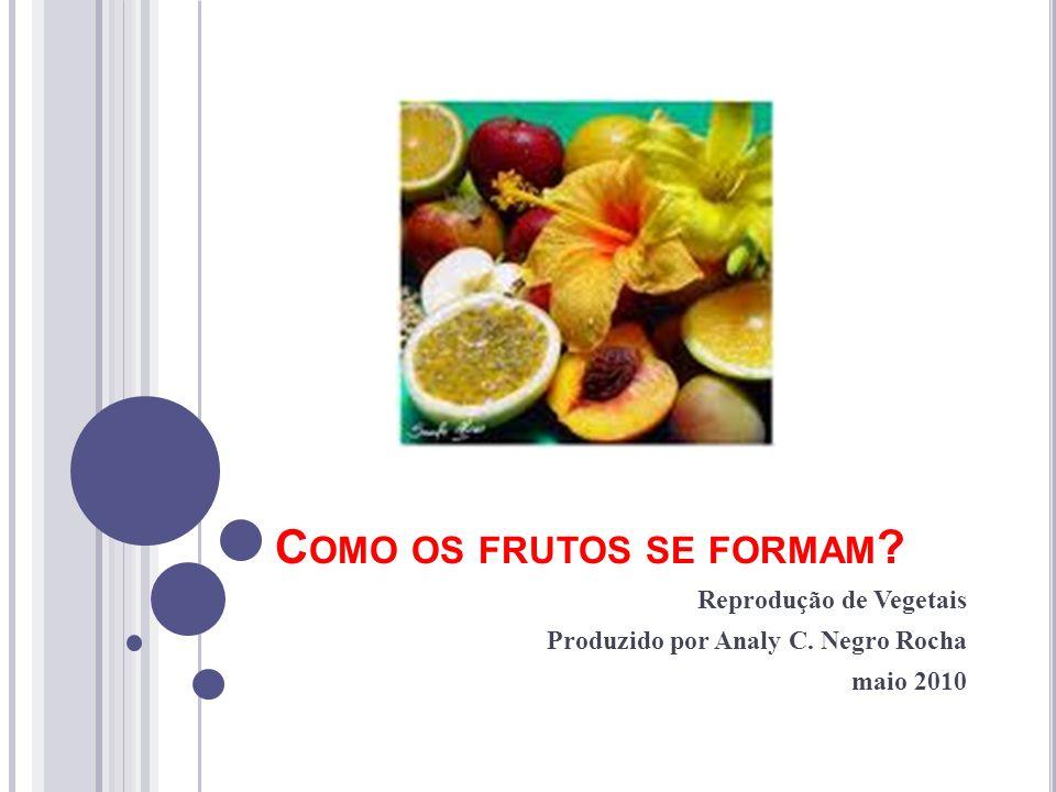 Como os frutos se formam