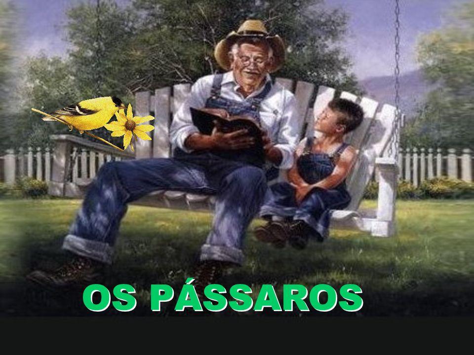 OS PÁSSAROS