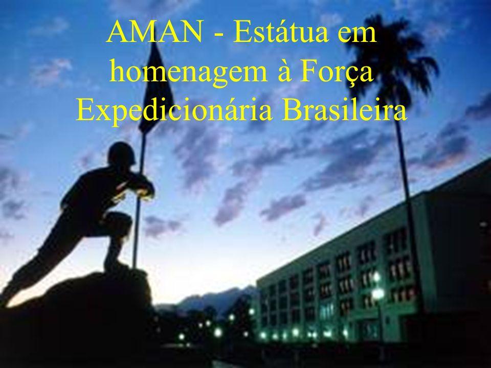AMAN - Estátua em homenagem à Força Expedicionária Brasileira